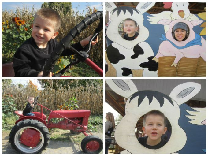 Walden Farm (Pumpkin Patch): Family Friendly Review