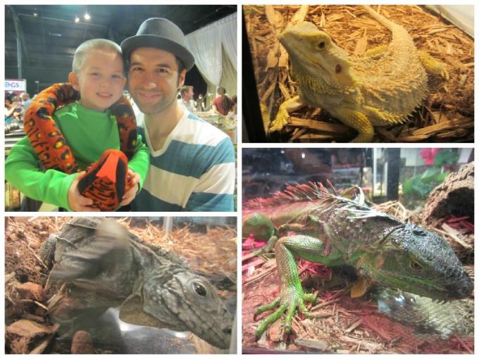 Dear Jack: Our Visit To Repticon 2015 in Franklin, TN