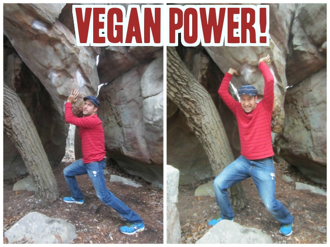 What I've Learned From Being A Vegan For The Past 2 Years Nick Shell
