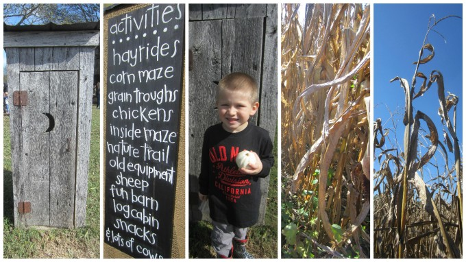 Dear Jack: Our Family's Visit to Gentry's Farm in Franklin, TN
