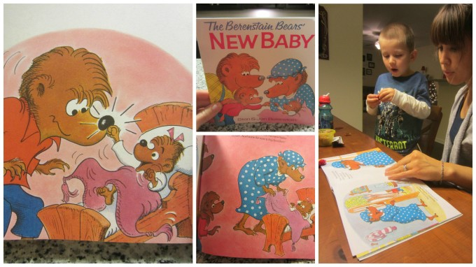 Dear Holly: The Berenstain Bears' New Baby