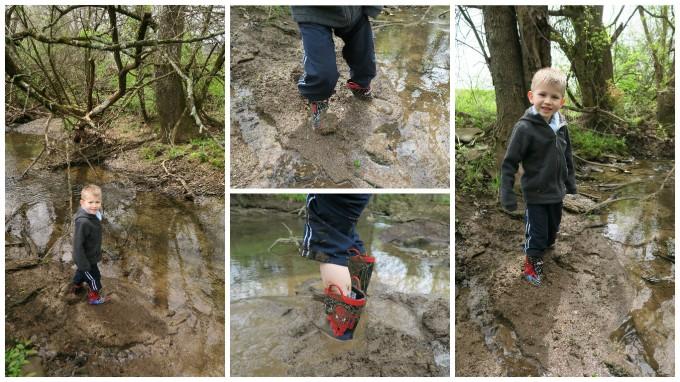 The Quicksand (Mud) at McCutcheon Creek