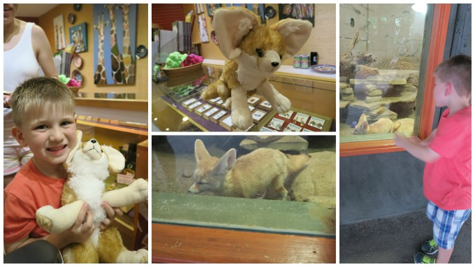 Dear Jack: Our Visit to the San Diego Zoo Safari Park (San Diego Vacation/2016 Mitsubishi Outlander)