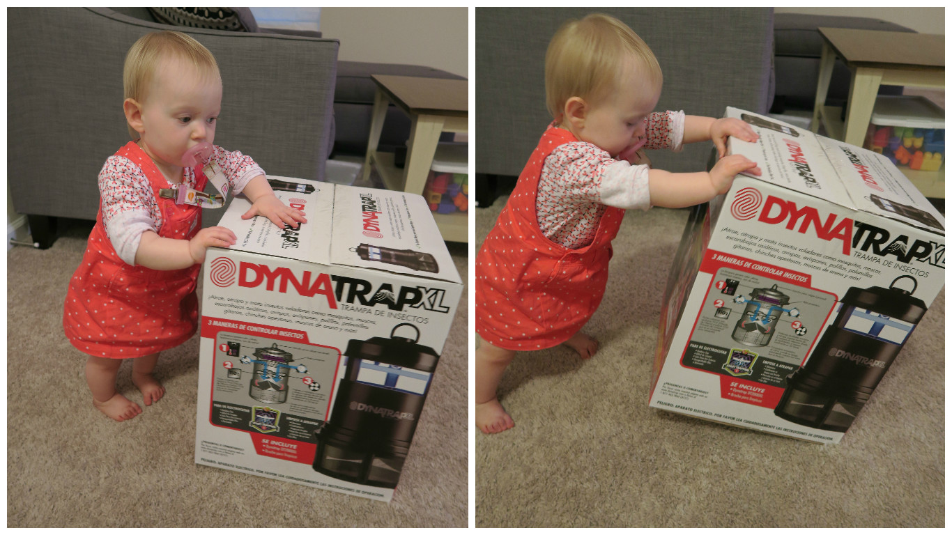 receiving a free dynatrap xl insect trap for my family to enjoy plus they asked me if i would mind hosting a giveaway here on my blog