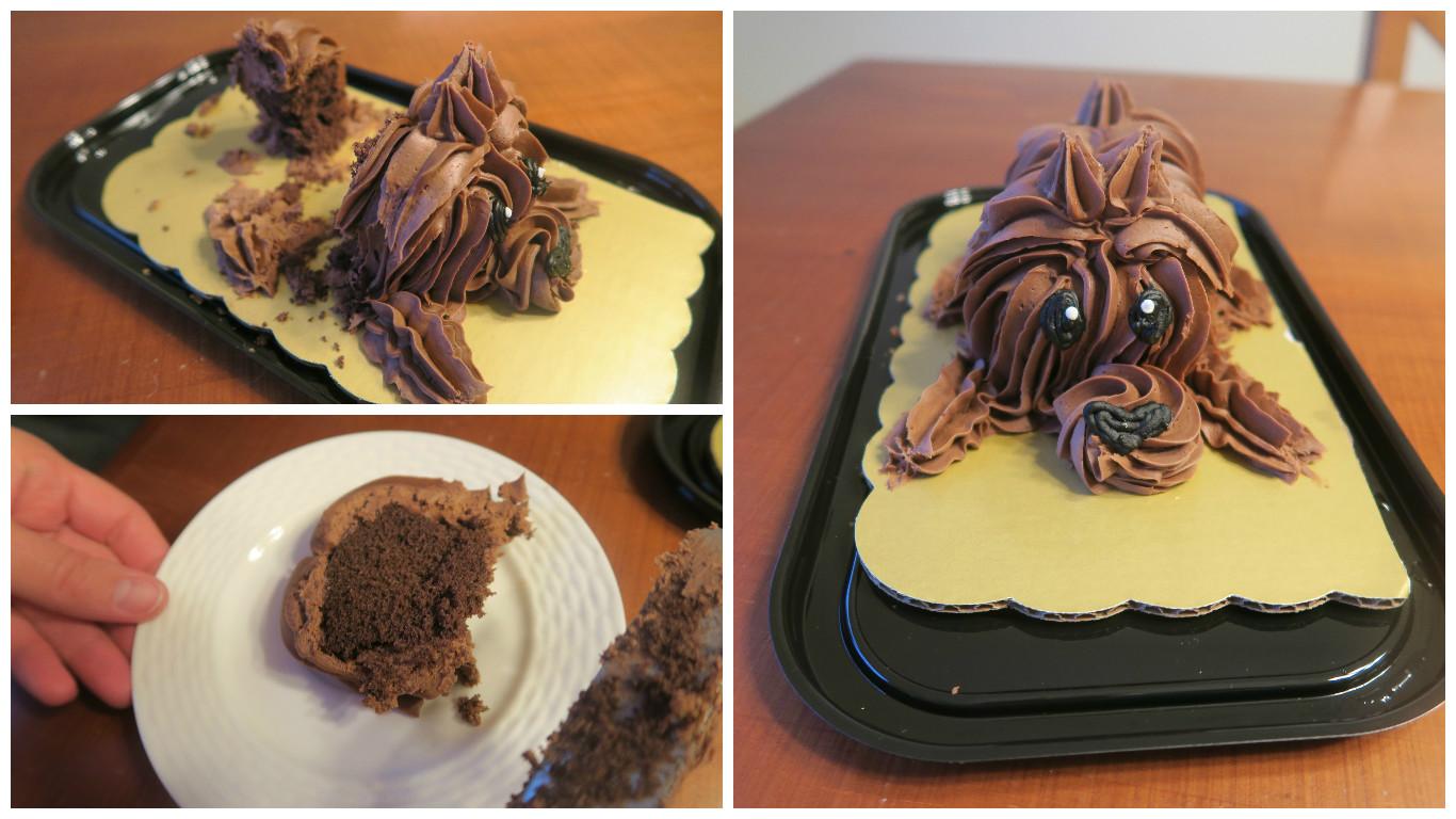 Sensational Dear Holly The 2 99 Chocolate Puppy Cake From Kroger Family Funny Birthday Cards Online Inifodamsfinfo